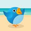 Tweet Birds - New Strategy Game For Your Site.