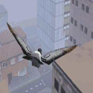 flying bird games online free